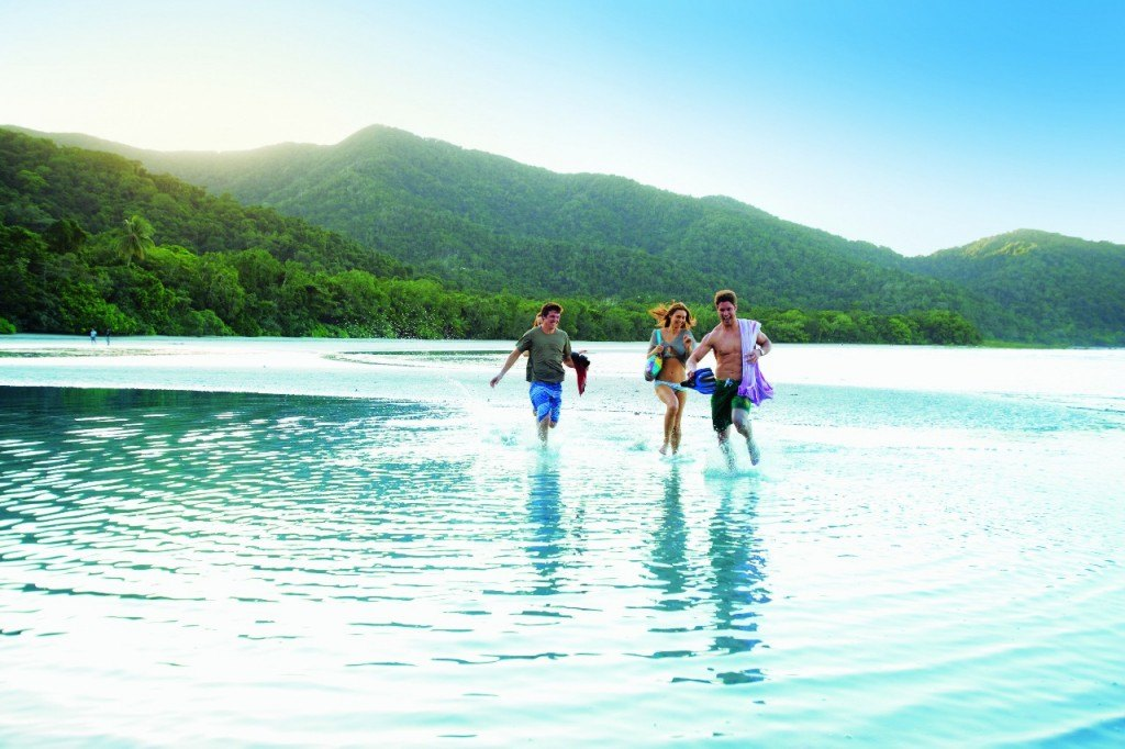 Discover the Daintree Rainforest