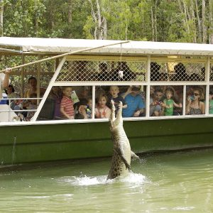 Cairns top attractions include the Great Barrier Reef, Daintree Rainforest and Atherton Tablelands.