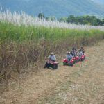 Quad Bike Tour Cairns