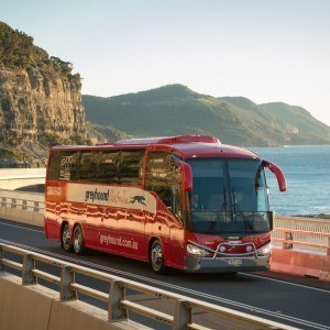 Australia Greyhound Bus Passes