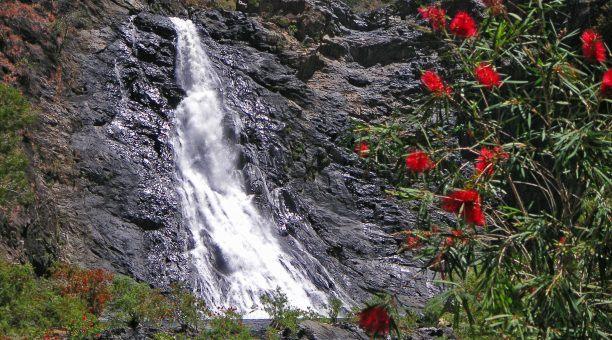 Falls near Bloomfield In Daintree