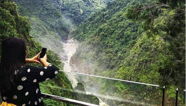 The Edge, Skyrail Rainforest Cableway